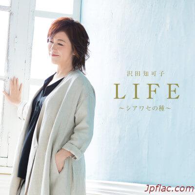 沢田知可子 - LIFE ~シアワセの種~ rar