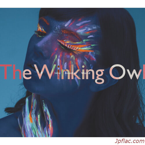 The Winking Owl - Into Another World rar