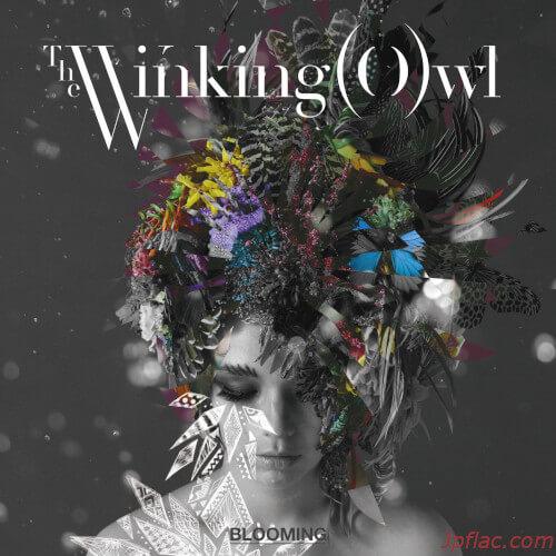 The Winking Owl - BLOOMING rar